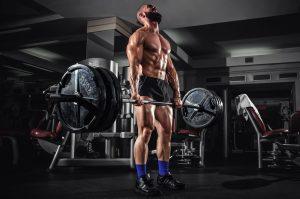 ejercicios para la rutina de fuerza